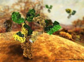 La guerra de los mundos: microbios extraterrestres contra anticuerpos humanos