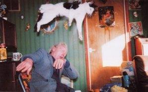 animales en suspenso