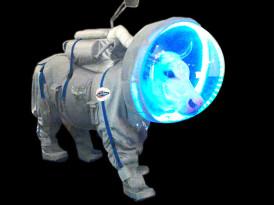 Vacas magnéticas, Planck y nuestra galaxia