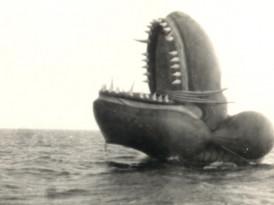 La serpiente marina de Nantucket, una estafa