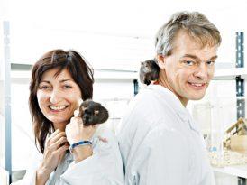 Cartografías cerebrales: el Nobel de medicina 2014