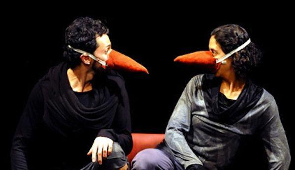 cuervo 2(1)
